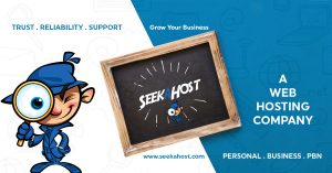 SeekaHost Web Hosting Guide For UK Businesses