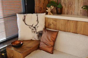 divan set with pillows